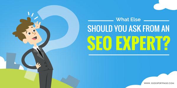 یک متخصص سئو چگونه باعث ارتقا وبسایت میشود؟