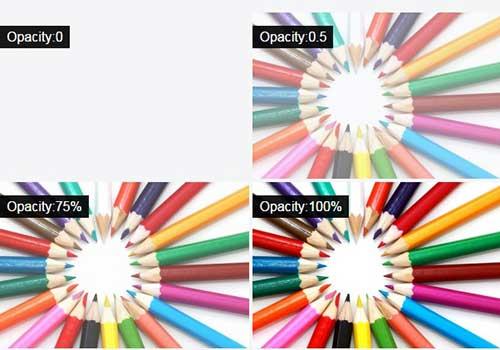میزان اپسیتی در طراحی وب سایت