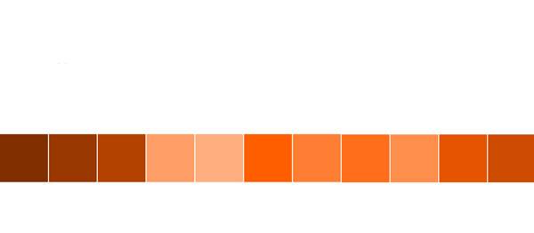 رنگ نارنجی در طراحی سایت